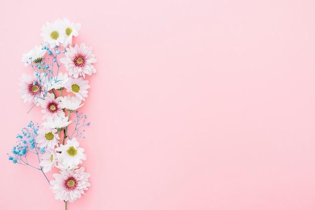 Flores bonitas em fundo rosa com espaço na direita Foto gratuita