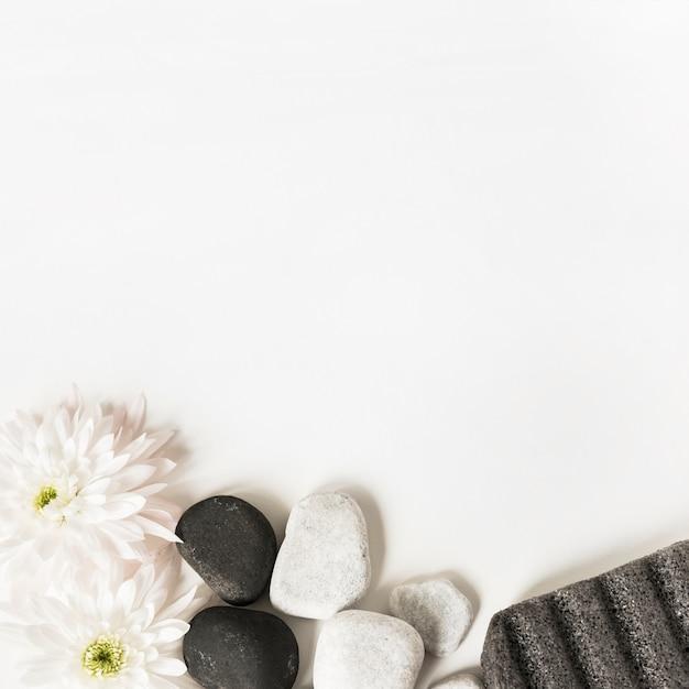 Flores brancas; la pedras e pedra-pomes isolado sobre o fundo branco Foto gratuita