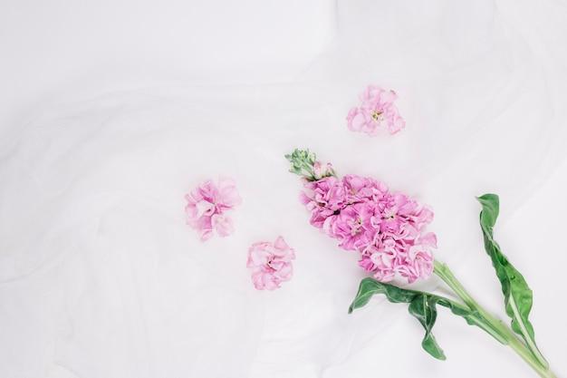 Flores com véu de noiva Foto gratuita
