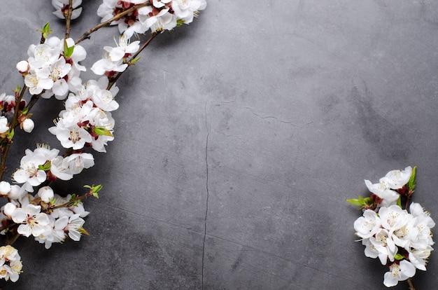 Flores da primavera com ramos florescendo damascos em fundo cinza Foto Premium