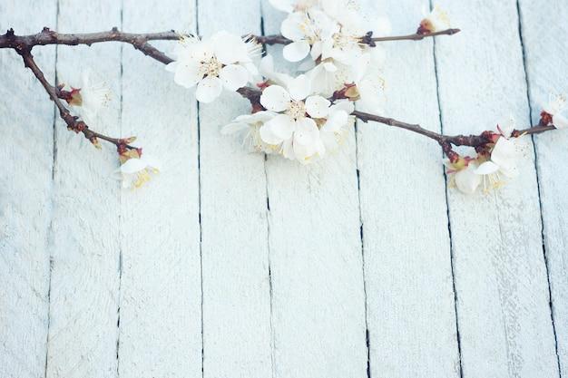 Flores da primavera em fundo de mesa de madeira. flor de ameixa Foto Premium