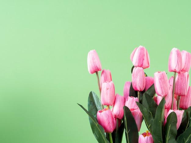 Flores da primavera. tulipa rosa em fundo verde Foto Premium