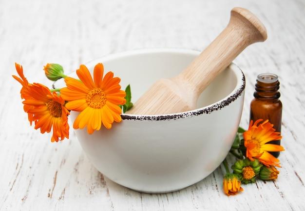 Flores de calêndula Foto Premium