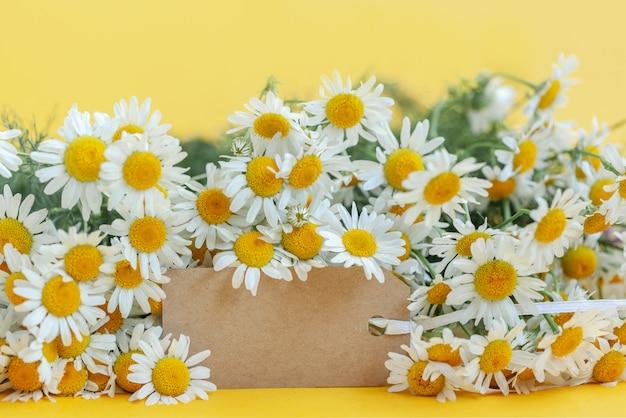 Flores de camomila com tag vazia em amarelo Foto Premium
