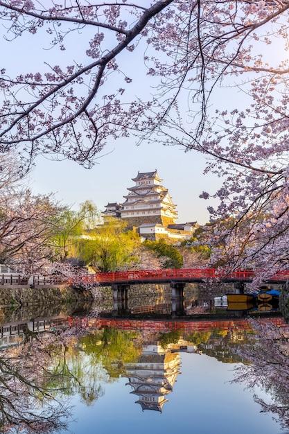 Flores de cerejeira e castelo em himeji, japão. Foto gratuita