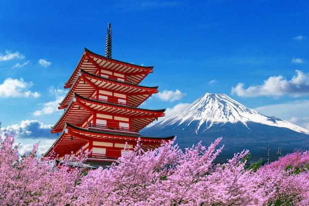 Flores de cerejeira na primavera, pagode chureito e montanha fuji no japão. Foto gratuita