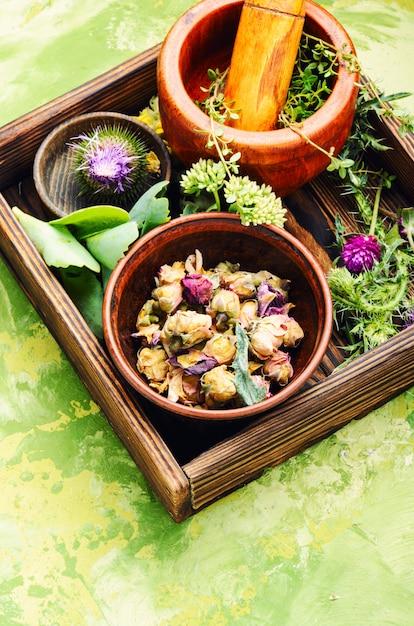 Flores de ervas medicinais Foto Premium