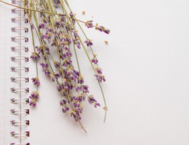 Flores de lavanda deitado sobre um caderno aberto Foto Premium