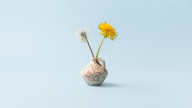 Flores-de-leão amarelas e uma flor com sementes em um fundo azul. Foto Premium