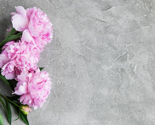 Flores de peônia rosa linda Foto Premium