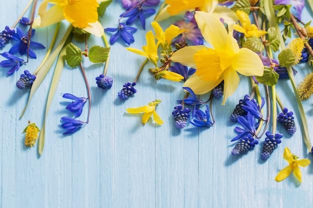 Flores de primavera amarelo e azul sobre fundo de madeira Foto Premium