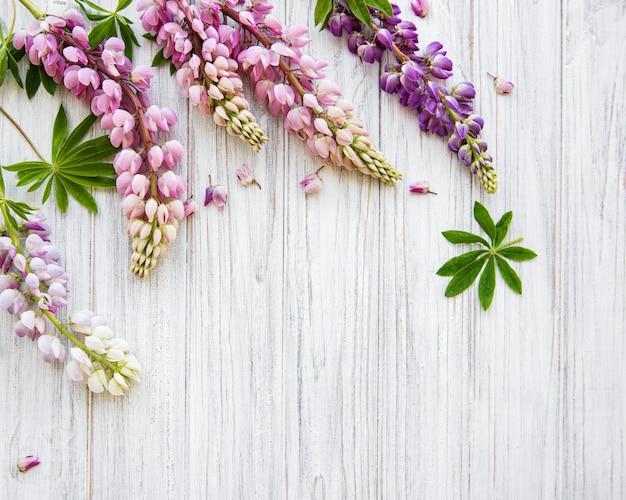 Flores de tremoço-de-rosa Foto Premium