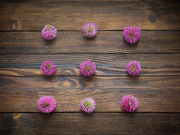 Flores de trevo no fundo escuro de madeira Foto Premium