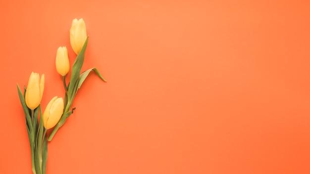 Flores de tulipa amarela na mesa laranja Foto gratuita