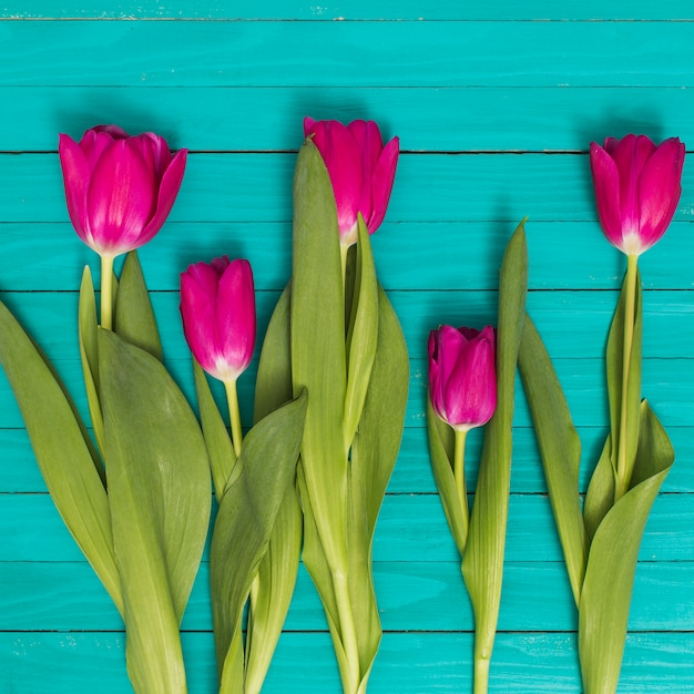 Flores de tulipa rosa com folhas verdes na mesa de madeira Foto gratuita