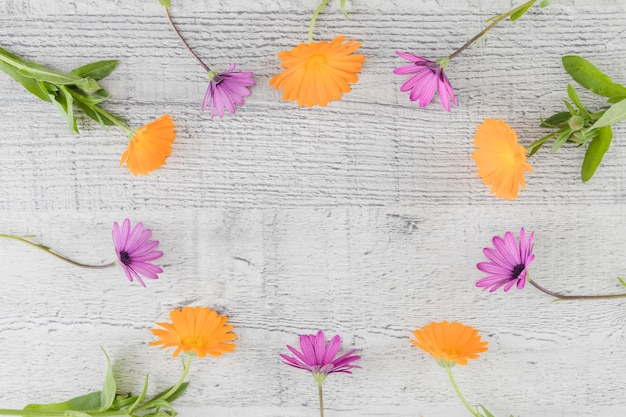 Flores de vista superior com espaço de cópia Foto gratuita