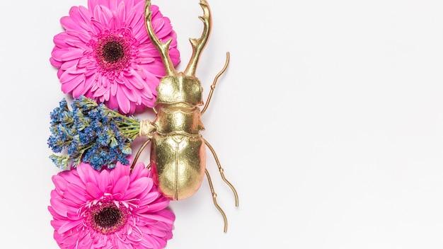 Flores e besouro Foto gratuita