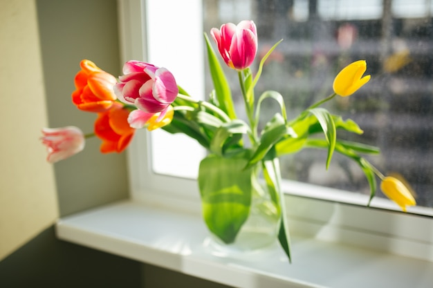 Flores no vaso. lar doce lar. dia ensolarado. linda primavera Foto Premium