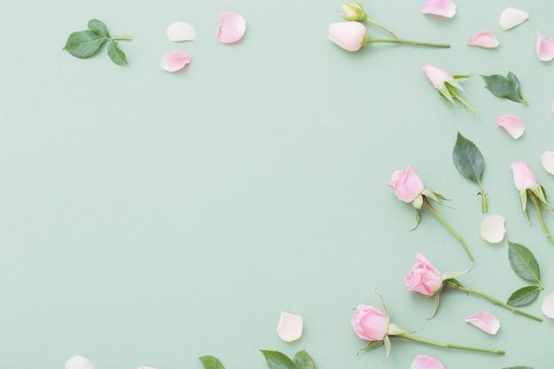 Flores rosa e brancas Foto Premium