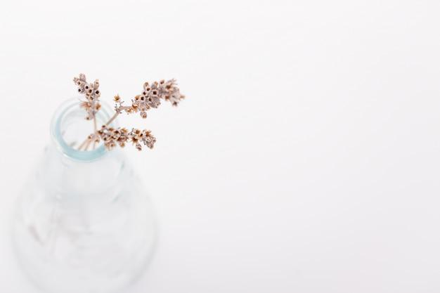 Flores secas em um vaso Foto gratuita