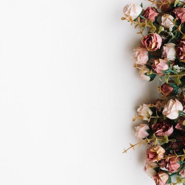 Flores sobre fundo branco Foto gratuita