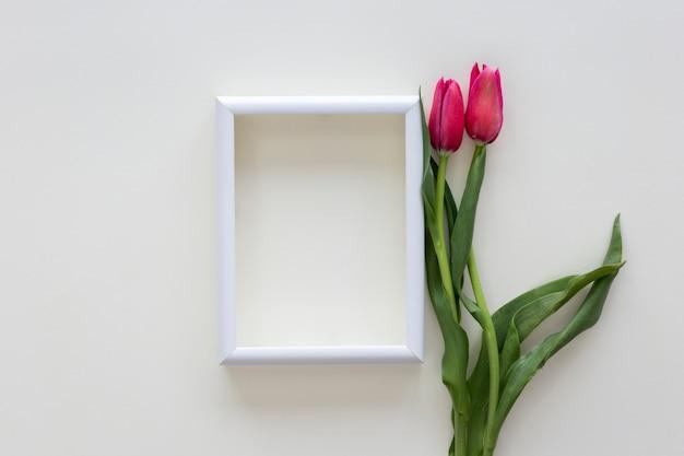 Flores tulipa vermelha e moldura branca fronteira na mesa branca Foto gratuita