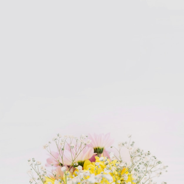 Florescente ramo de flores silvestres Foto gratuita