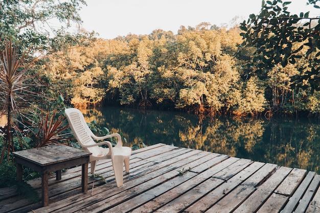 Floresta bonita do lago e dos manguezais. Foto Premium