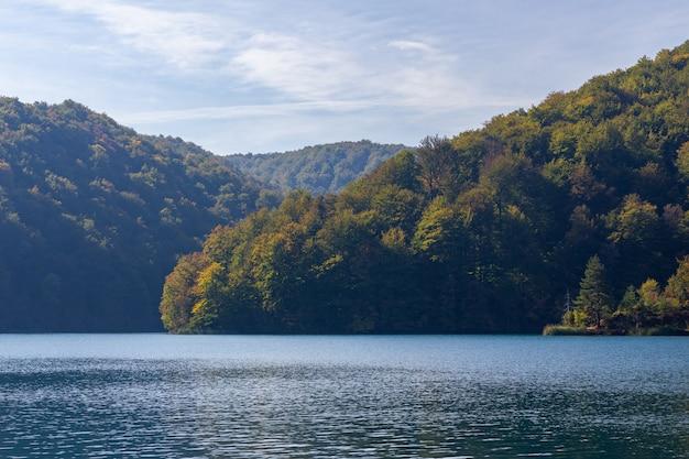 Floresta nas colinas perto do lago plitvice na croácia Foto gratuita