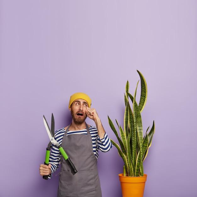 Florista infeliz chora de desespero, tem que cortar a planta sansevieria após regar demais Foto gratuita