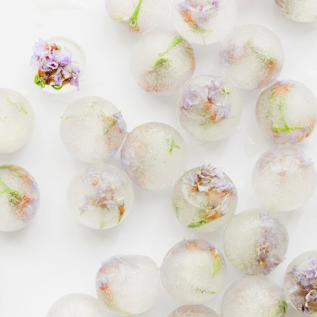 Florzinhas cor-de-rosa em bolas de gelo Foto gratuita