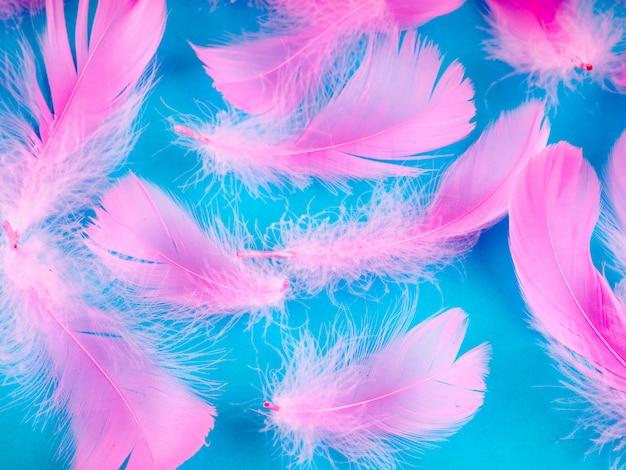 Foco suave seletivo close-up penas cor de rosa textura de fundo em cor pastel Foto Premium