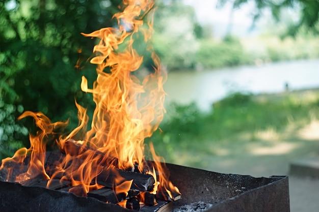 Fogo, chamas de madeira brasa para churrasqueira ou churrasco piquenique, fumaça e lenha ao ar livre Foto Premium