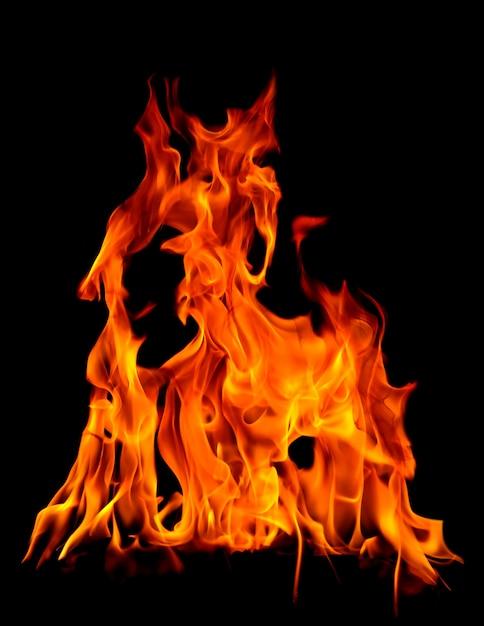 Fogo queimando brilhante Foto Premium