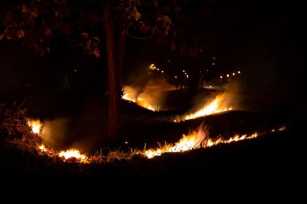 Fogo sobre o lado selvagem da estrada, a chama da queima da noite Foto Premium