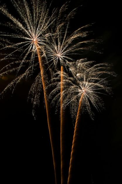 Fogos de artifício à noite, castelos de fogo Foto Premium