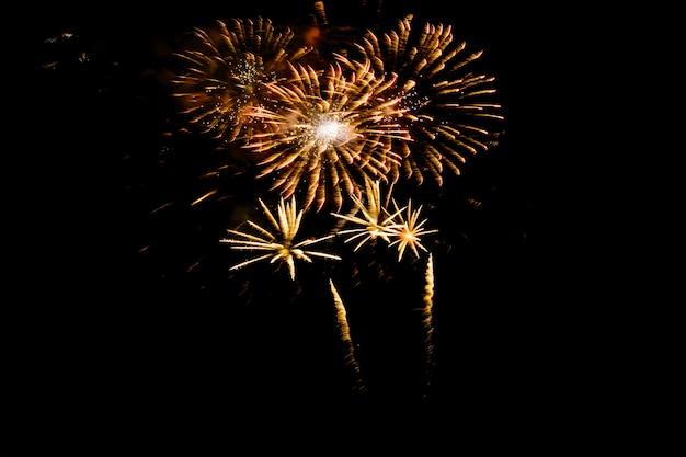 Fogos-de-artifício coloridos de encontro a um céu nocturno preto. fogos de artifício para o ano novo. fogos de artifício coloridos bonitos exibir no lago urbano para celebração Foto Premium