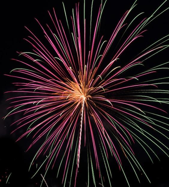 Fogos de artifício coloridos no céu noturno Foto Premium
