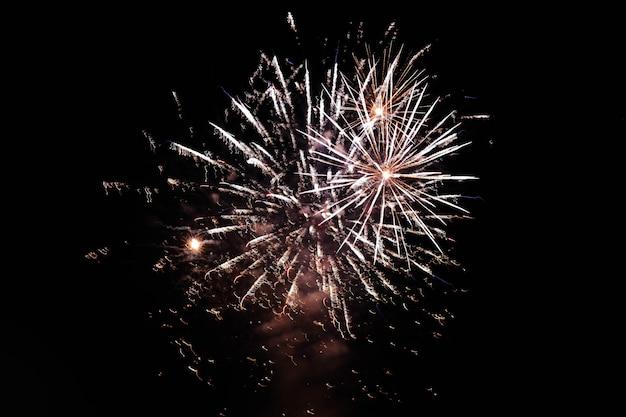 Fogos de artifício explodindo no céu noturno espalhando uma atmosfera festiva Foto gratuita