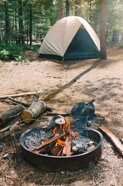 Fogueira e um acampamento em uma floresta definida por caminhantes Foto gratuita