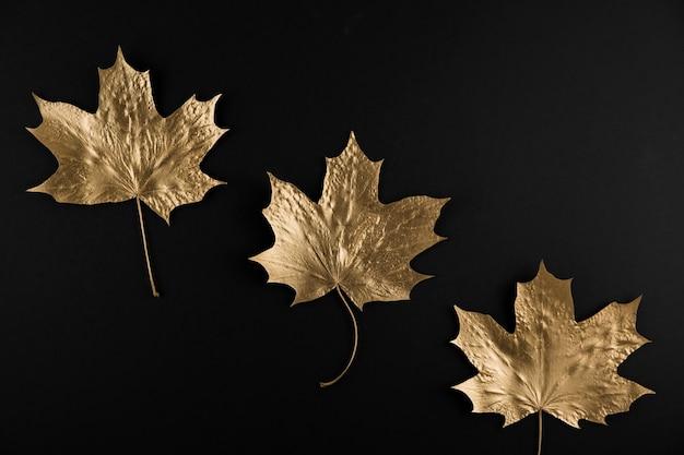 Folha de bordo dourada brilhante em fundo preto Foto Premium