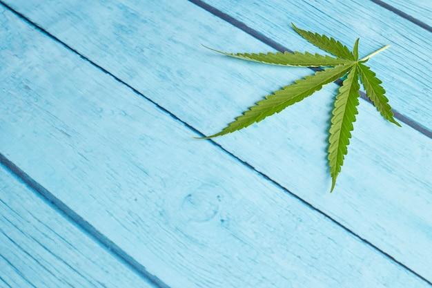 Folha de cannabis em madeira azul brilhante Foto Premium