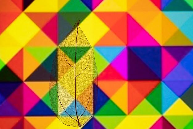 Folha de outono colorida com padrão geométrico Foto gratuita