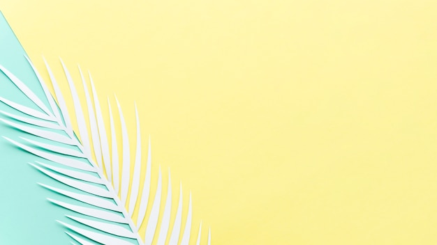 Folha de palmeira de papel na mesa brilhante Foto gratuita