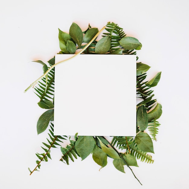 Folha de papel nas folhas Foto Premium