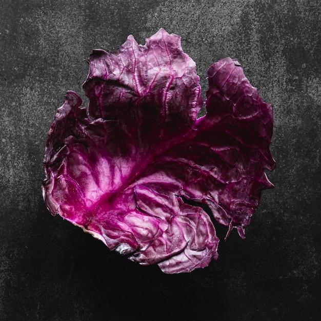 Folha de repolho roxo vista de cima Foto gratuita