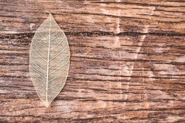 Folha transparente no fundo de madeira Foto Premium