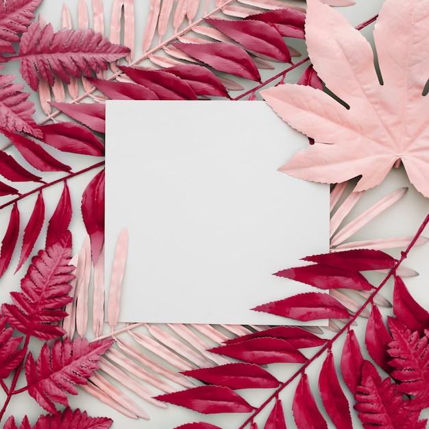 Folhas cor de rosa tingidas em fundo branco com um quadro em branco Foto gratuita