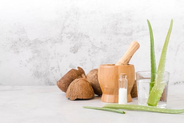 Folhas de aloe vera em uma vista frontal de vidro e coco Foto Premium
