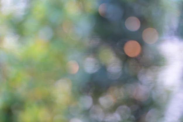 Folhas de árvore para fundo de natureza e salvar o conceito verde Foto Premium